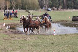 Reit-Vielseitigkeitsturnier_Loewenberg-Linde_2015